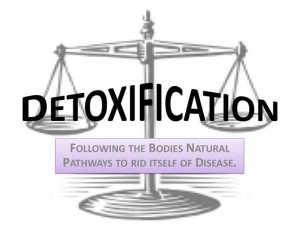 Image of scale featuring Detoxification